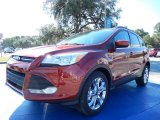 2014 Sunset Ford Escape SE 2.0L EcoBoost #87380545