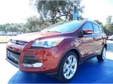 2014 Sunset Ford Escape Titanium 2.0L EcoBoost #87380540