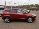 2014 Sunset Ford Escape Titanium 1.6L EcoBoost 4WD #87418861