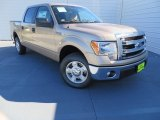 2013 Pale Adobe Metallic Ford F150 XLT SuperCrew #87457633