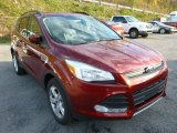 2014 Sunset Ford Escape SE 2.0L EcoBoost 4WD #87493816