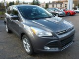 2014 Sterling Gray Ford Escape SE 1.6L EcoBoost 4WD #87493815