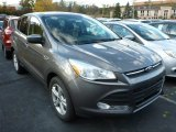 2014 Sterling Gray Ford Escape SE 2.0L EcoBoost 4WD #87493813