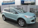 2013 Frosted Glass Metallic Ford Escape SEL 2.0L EcoBoost 4WD #87523476