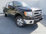 2013 Kodiak Brown Metallic Ford F150 XLT SuperCrew 4x4 #87569039