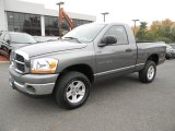 2006 Mineral Gray Metallic Dodge Ram 1500 SLT Regular Cab 4x4 #87618264