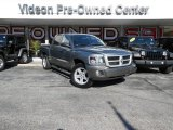 2010 Mineral Gray Metallic Dodge Dakota Big Horn Crew Cab 4x4 #87618548