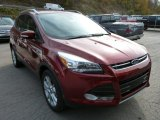 2014 Sunset Ford Escape Titanium 2.0L EcoBoost 4WD #87618125