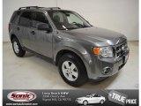 2009 Sterling Grey Metallic Ford Escape XLT V6 #87618223
