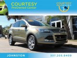 2013 Ginger Ale Metallic Ford Escape SEL 2.0L EcoBoost #87665654