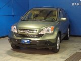 2009 Green Tea Metallic Honda CR-V EX-L 4WD #87665487