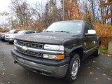 Onyx Black Chevrolet Silverado 1500 in 2002