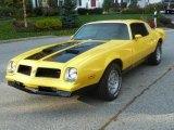 1976 Pontiac Firebird Formula 400