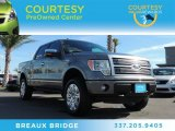 2011 Sterling Grey Metallic Ford F150 Platinum SuperCrew 4x4 #87714477