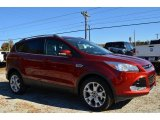 2014 Sunset Ford Escape Titanium 1.6L EcoBoost #87714159