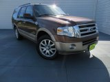 2011 Golden Bronze Metallic Ford Expedition King Ranch #87714244