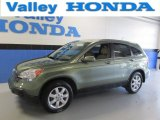 2009 Green Tea Metallic Honda CR-V EX-L 4WD #87713894