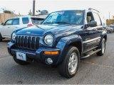 2002 Patriot Blue Pearlcoat Jeep Liberty Limited 4x4 #87763376