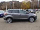 2014 Sterling Gray Ford Escape Titanium 2.0L EcoBoost 4WD #87789872