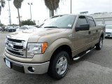 2013 Pale Adobe Metallic Ford F150 XLT SuperCrew #87789847