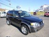2006 Black Ford Escape XLT V6 4WD #87864842