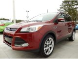 2014 Sunset Ford Escape Titanium 2.0L EcoBoost #87864779