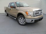 2013 Pale Adobe Metallic Ford F150 XLT SuperCab #87911001