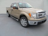 2013 Pale Adobe Metallic Ford F150 XLT SuperCab #87911000