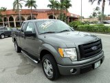 2010 Sterling Grey Metallic Ford F150 STX SuperCab #87910807