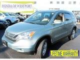 2010 Opal Sage Metallic Honda CR-V EX-L AWD #87957771