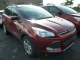 2014 Sunset Ford Escape SE 1.6L EcoBoost 4WD #87999000