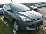2014 Sterling Gray Ford Escape SE 1.6L EcoBoost #87998997