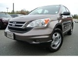 2010 Urban Titanium Metallic Honda CR-V LX #87999140