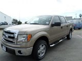 2013 Pale Adobe Metallic Ford F150 XLT SuperCrew #88016257