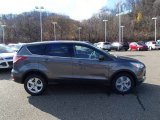 2014 Sterling Gray Ford Escape SE 1.6L EcoBoost #88024192