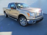 2013 Pale Adobe Metallic Ford F150 XLT SuperCab #88059437