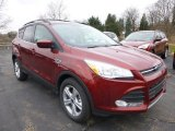 2014 Sunset Ford Escape SE 2.0L EcoBoost 4WD #88059317