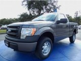 2014 Sterling Grey Ford F150 XL Regular Cab 4x4 #88103840