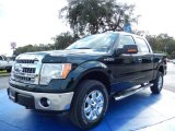 2014 Green Gem Ford F150 XLT SuperCrew 4x4 #88103836