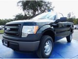 2014 Green Gem Ford F150 XL Regular Cab 4x4 #88103835