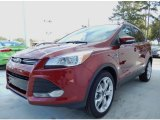 2014 Sunset Ford Escape Titanium 2.0L EcoBoost #88103823