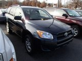 2010 Black Forest Pearl Toyota RAV4 I4 4WD #88104686