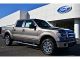 2014 Sterling Grey Ford F150 XLT SuperCrew 4x4 #88104000