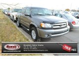 2003 Phantom Gray Pearl Toyota Tundra Limited Access Cab 4x4 #88103469