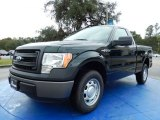 2014 Green Gem Ford F150 XL Regular Cab #88192480