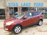 2014 Sunset Ford Escape SE 1.6L EcoBoost 4WD #88255964
