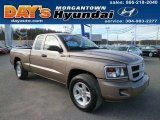 2010 Mineral Gray Metallic Dodge Dakota Big Horn Extended Cab 4x4 #88284101