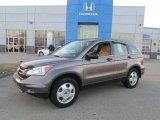 2011 Urban Titanium Metallic Honda CR-V LX 4WD #88349296