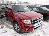 2009 Sangria Red Metallic Ford Escape Limited 4WD #88376151