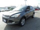 2014 Sterling Gray Ford Escape SE 1.6L EcoBoost #88376159